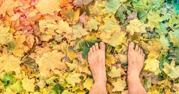 barefoot on leaves