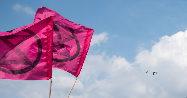 Extinction Rebellion flags in Bristol July 2019